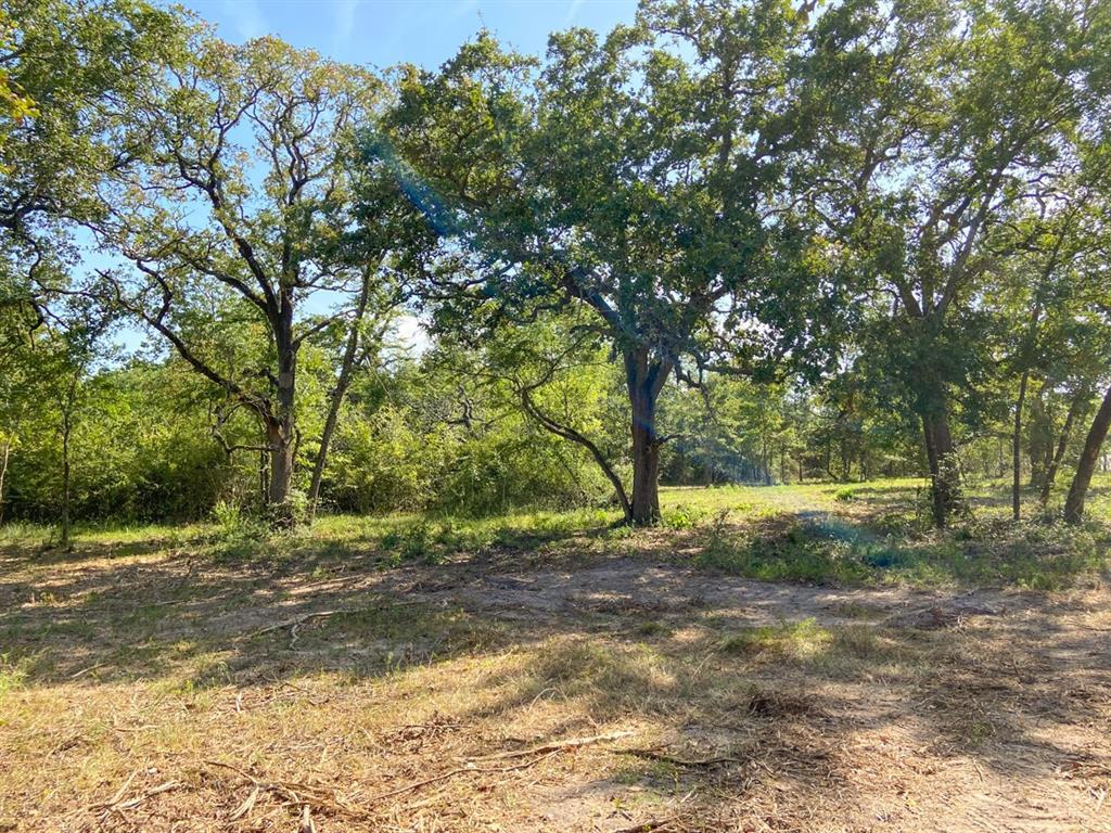 Active | 000 Morgan Spur Huntsville, Texas 77342 1