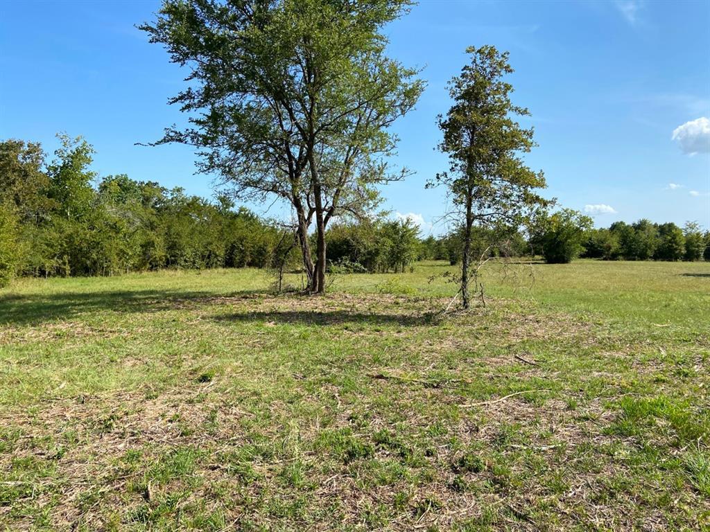 Active | 000 Morgan Spur Huntsville, Texas 77342 5