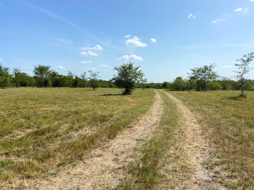 Active | 0000 Morgan Spur Rd Huntsville, Texas 77342 0