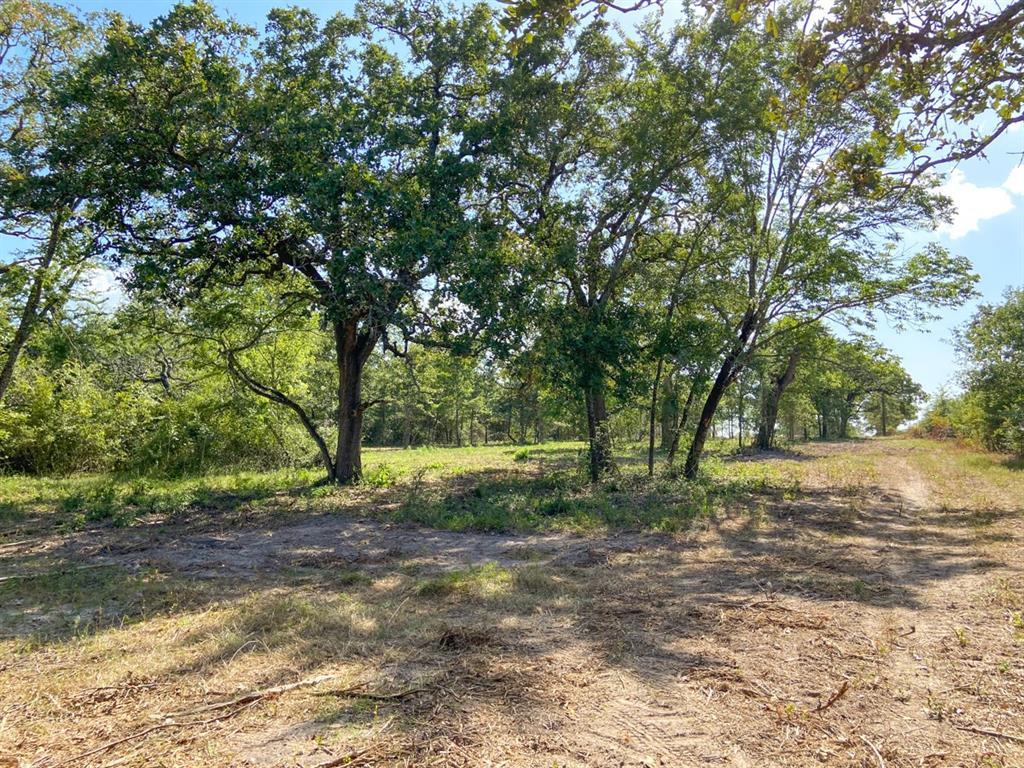 Active | 0000 Morgan Spur Rd Huntsville, Texas 77342 3