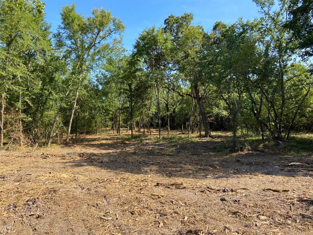 Active | 0000 Morgan Spur Rd Huntsville, Texas 77342 5