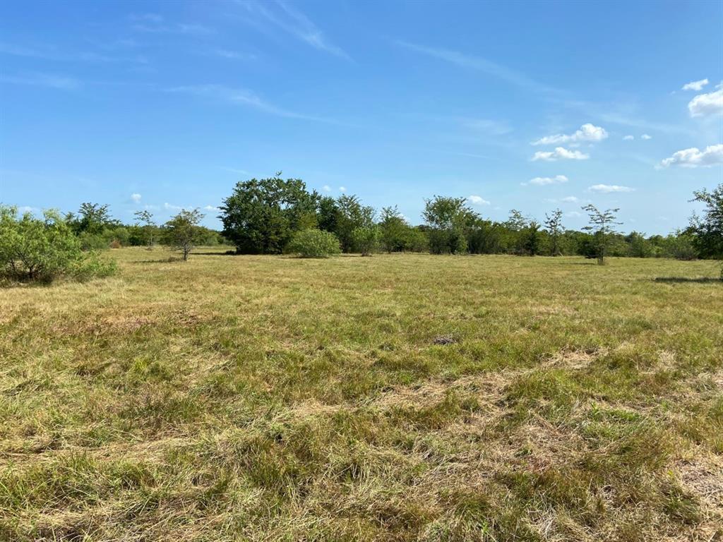 Active | 0000 Morgan Spur Rd Huntsville, Texas 77342 8