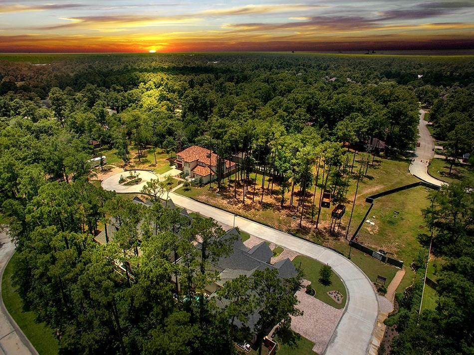Active | 21 Honey Daffodil Place The Woodlands, Texas 77380 0