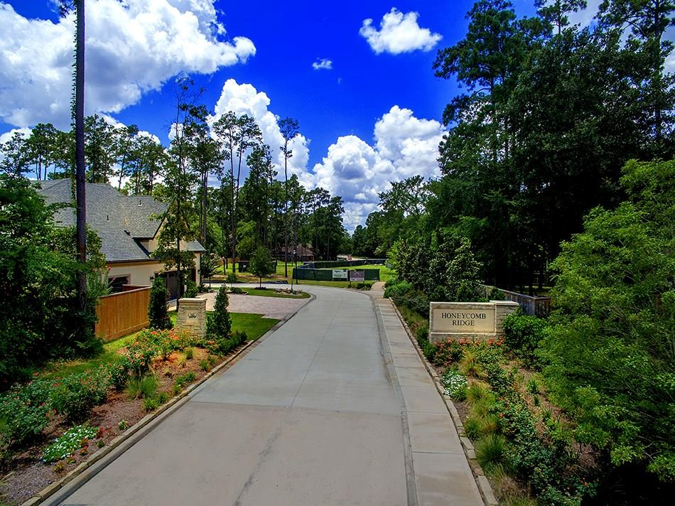 Active | 21 Honey Daffodil Place The Woodlands, Texas 77380 7