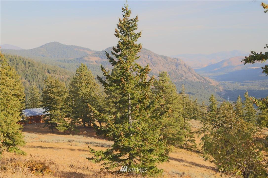 Sold Property   95 Flagg Mountain Loop Mazama, WA 98833 1