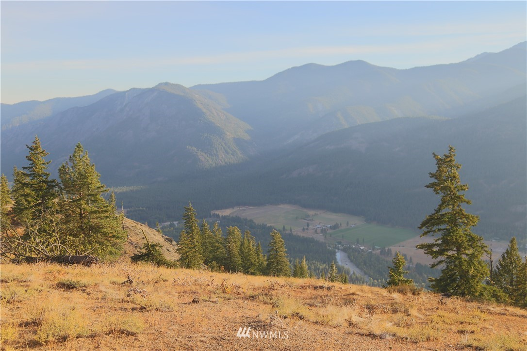 Sold Property   95 Flagg Mountain Loop Mazama, WA 98833 0