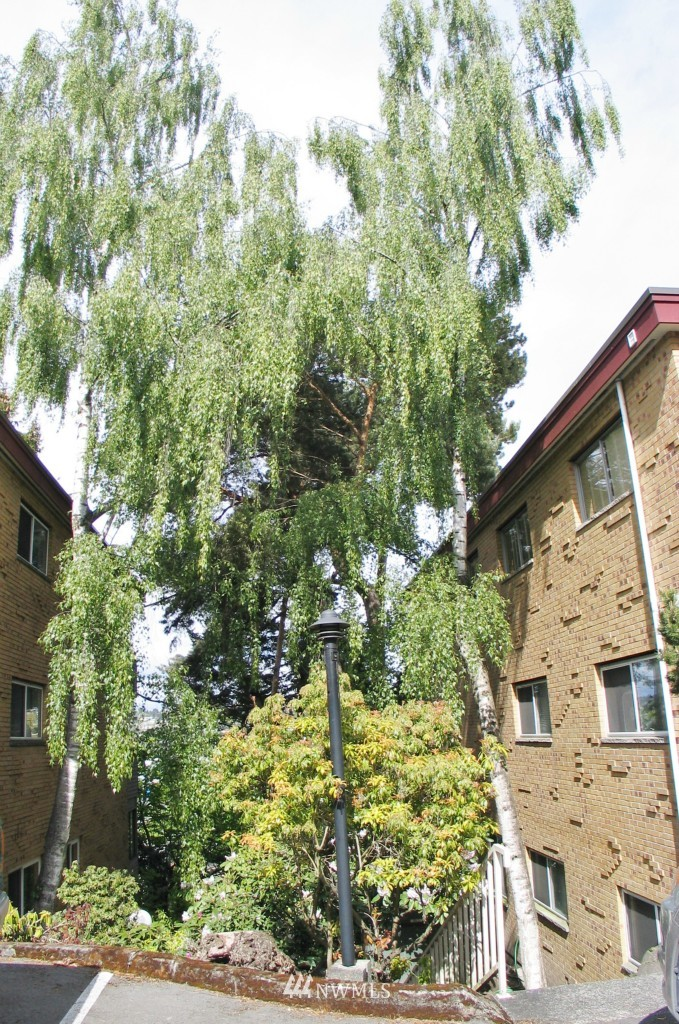 Sold Property | 1017 W Nickerson #24 Seattle, WA 98119 11