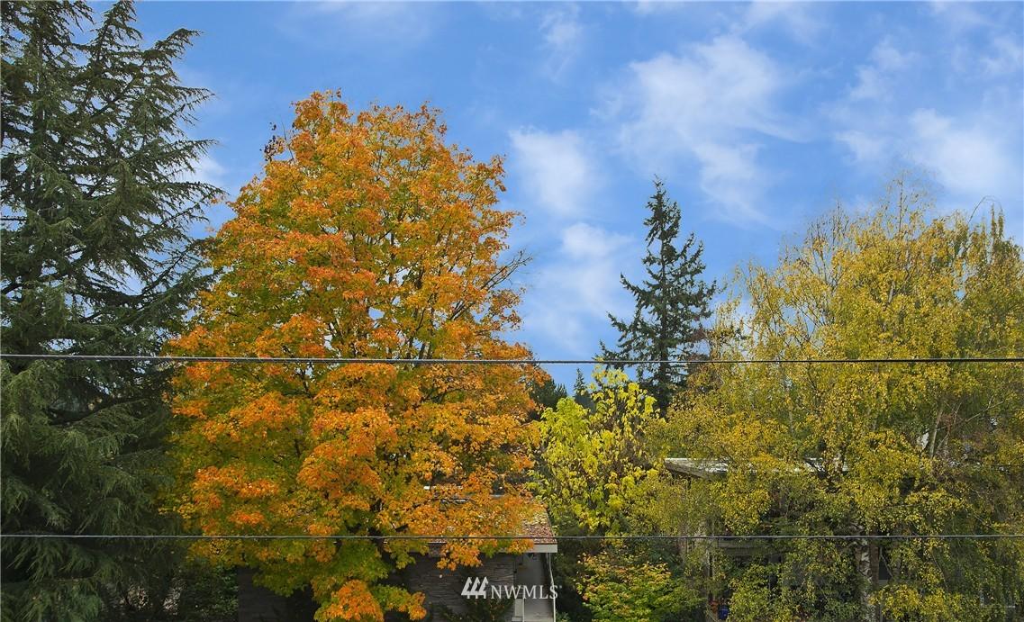 Sold Property | 12035 32nd Avenue NE #305 Seattle, WA 98125 14