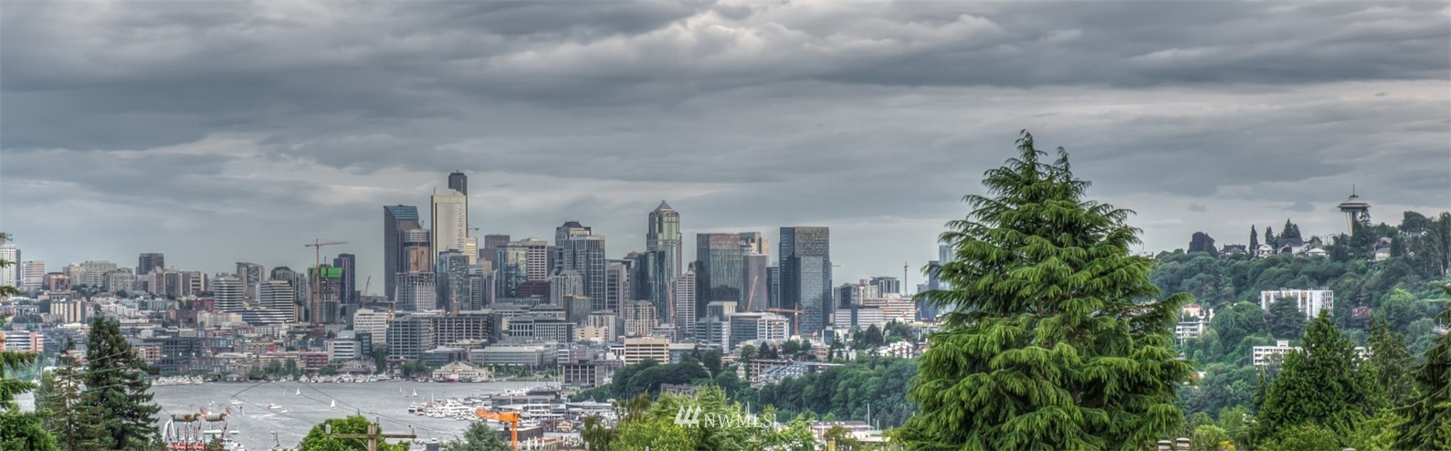 Sold Property | 4325 Woodland Park Avenue N Seattle, WA 98103 12